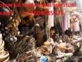 powerful-traditinal-spiritual-healer-call-27604045173-with-super-natual-powers-in-uk-canada-south-africa-kenya-africa-small-1