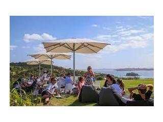 Wine Tour Deals In Waiheke
