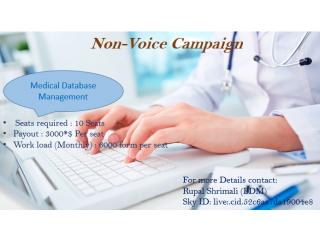 Non-voice campaign