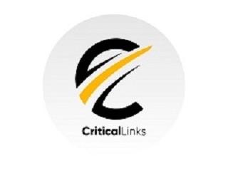 Critical Links